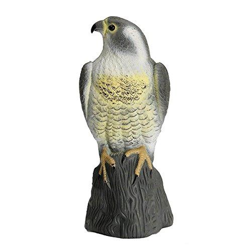 Disuasion de aves senuelo del halcon grande
