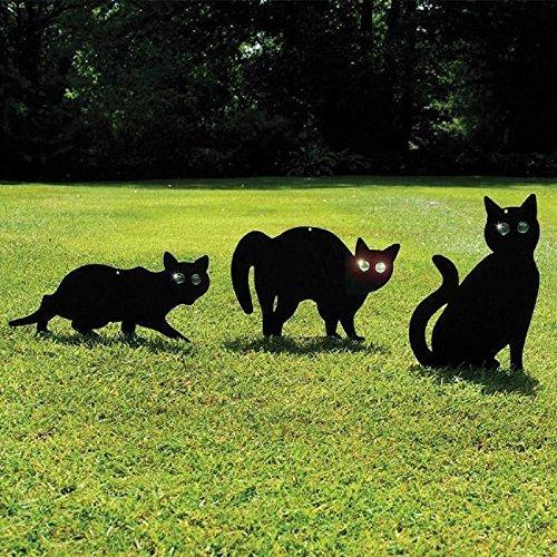 Paquete de 3 recubrimiento negro gato de metal