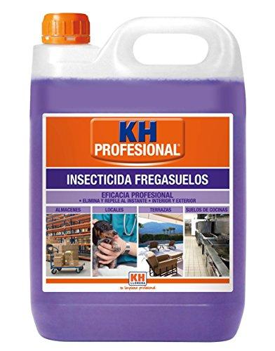 Desic insecticida limpiasuelos 5l