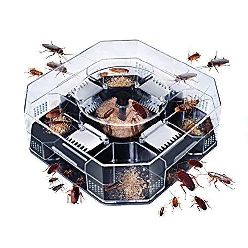 Trampa reutilizable para cucarachas sin contaminación