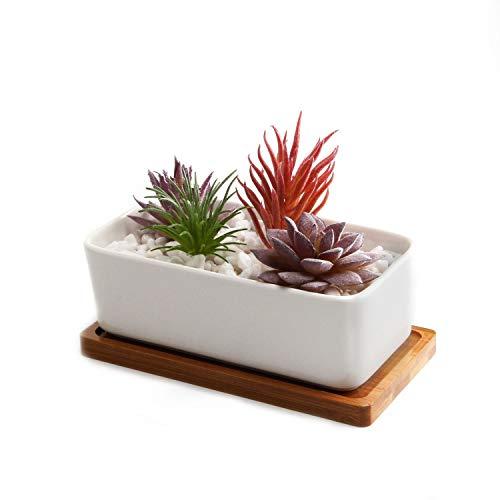 Conjunto de 1 rectángulo blanco de cerámica cerámicos planta maceta suculento cactus planta maceta planta contenedor vivero maceta macetas de jardín macetas envase
