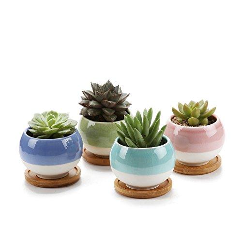 7.5cm forma de bola suculento cactus macetas jardineros de macetas contenedores cajas de ventana con bandeja de bambú colección