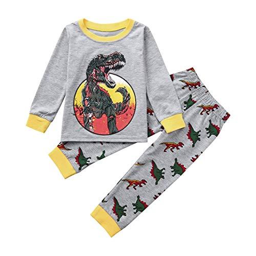 Ropa bebe niño invierno otoño 2pcs conjunto de ropa infantil de bebé niño niña dibujos animados dinosaurio camisa de manga larga