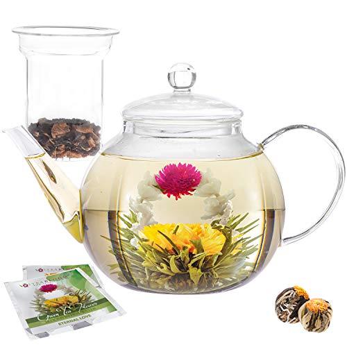 Tetera de cristal de teabloom & juego de infusor de vidrio