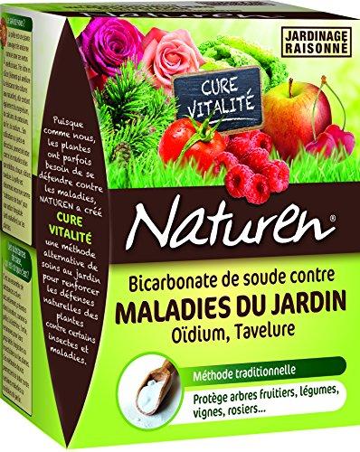 Bicarbonato de sodio contra las enfermedades del jardín