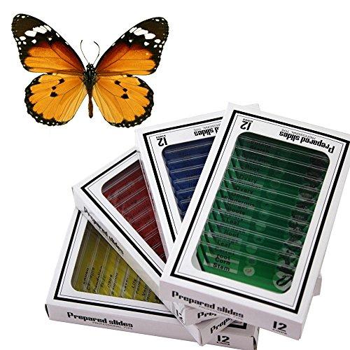 48pzas juego muestras preparadas microscopio animales insectos plantas flores plástico